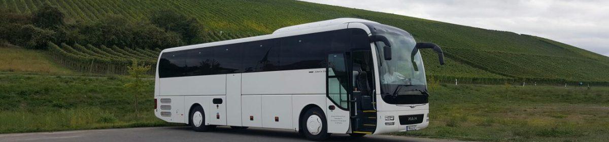 Mietwagen & Kleinbusse Ilchmann